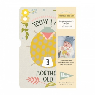 Milestone Cards - Turn Wheel Photo Card: Ages