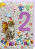 Collage Queen 2 Year Birthday Card - Cat