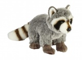 Suma Raccoon (multiple sizes)